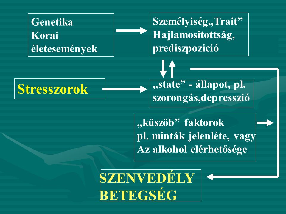 """Stresszorok Személyiség""""Trait"""" Hajlamositottság, prediszpozició Genetika Korai életesemények """"state"""" - állapot, pl. szorongás,depresszió """"küszöb"""" fakt"""