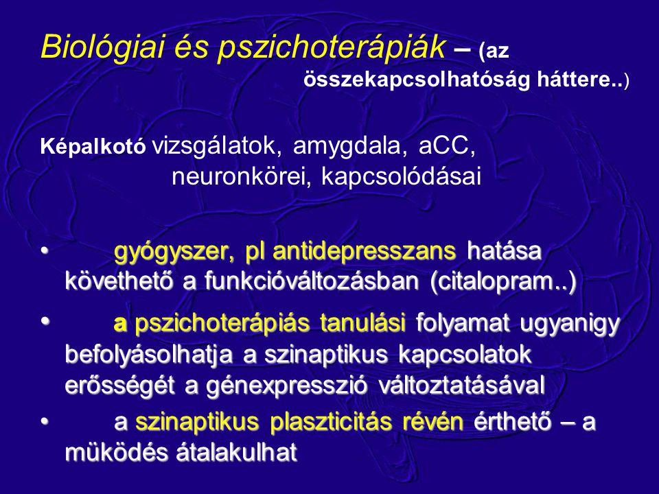 Biológiai és pszichoterápiák – (az összekapcsolhatóság háttere.. ) Képalkotó vizsgálatok, amygdala, aCC, neuronkörei, kapcsolódásai gyógyszer, pl anti
