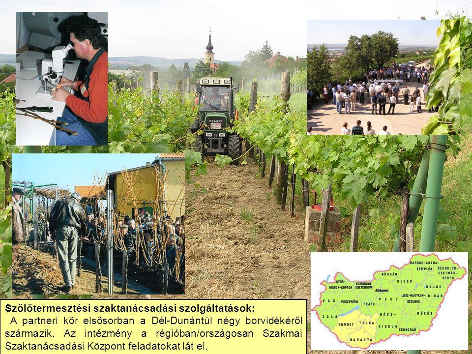 Szőlőtermesztési szaktanácsadási szolgáltatások: A partneri kör elsősorban a Dél-Dunántúl négy borvidékéről származik. Az intézmény a régióban/országo