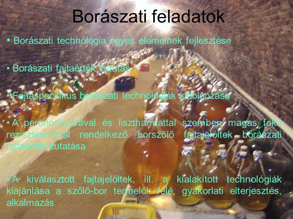 Borászati technológia egyes elemeinek fejlesztése Borászati fajtaérték kutatás Fajtaspecifikus borászati technológiák kidolgozása A peronoszpórával és