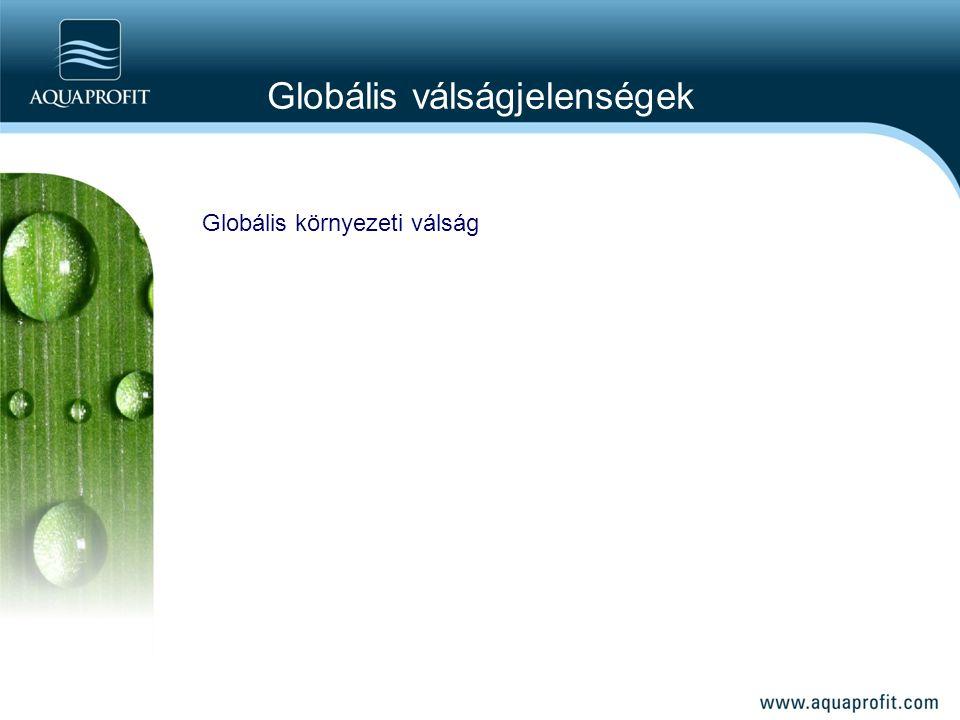 Globális környezeti válság Globális válságjelenségek