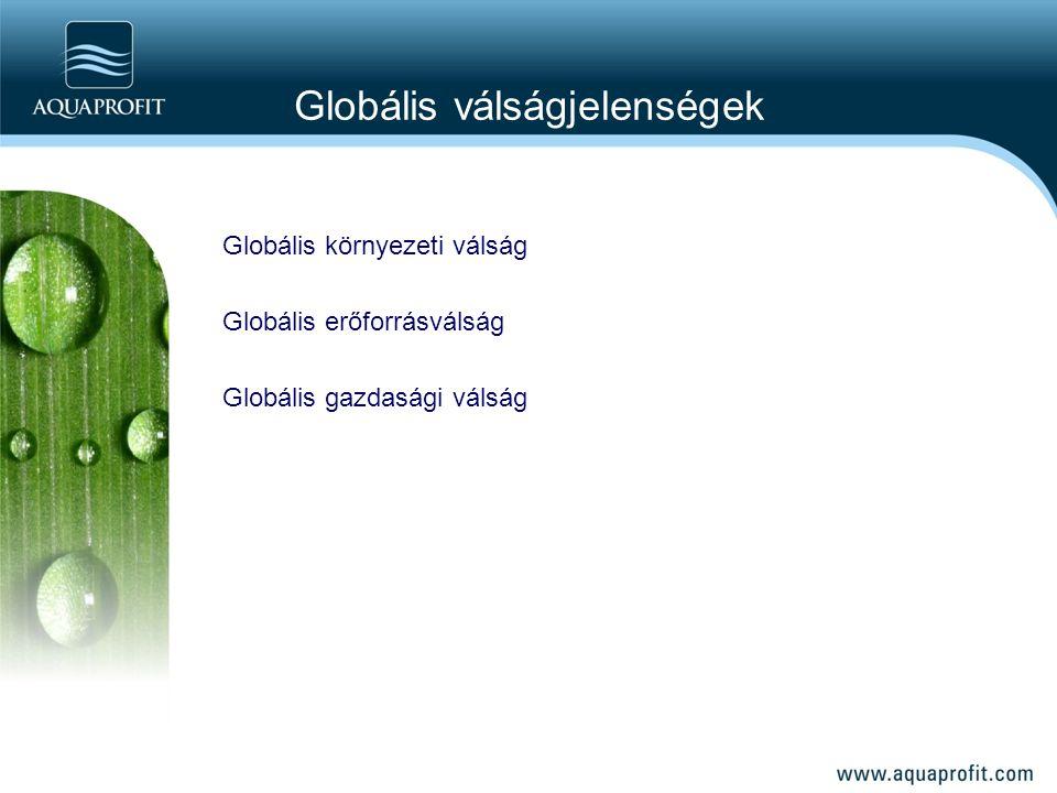 Globális válságjelenségek Globális környezeti válság Globális erőforrásválság Globális gazdasági válság