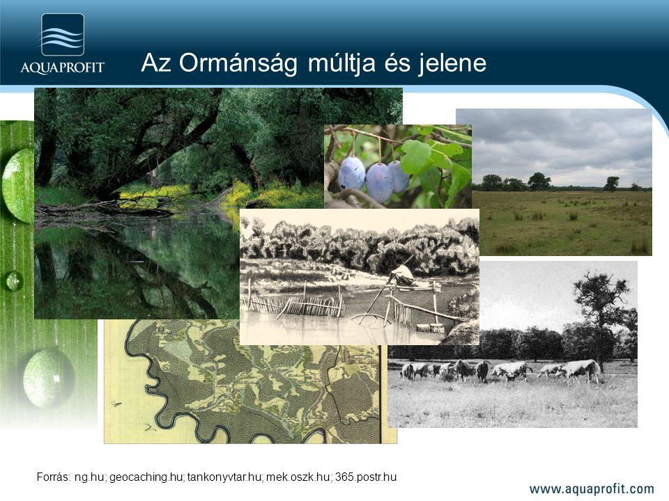 Az Ormánság múltja és jelene Forrás: ng.hu; geocaching.hu; tankonyvtar.hu; mek.oszk.hu; 365.postr.hu