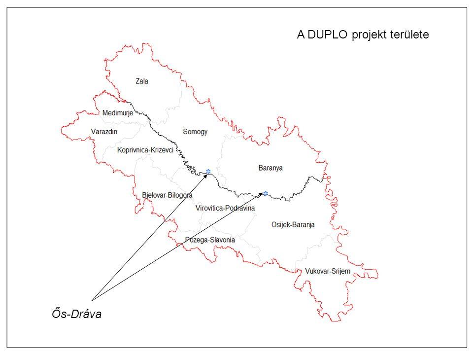 Kick-off meeting, 11. 04. 2013. Pécs A DUPLO projekt területe Ős-Dráva