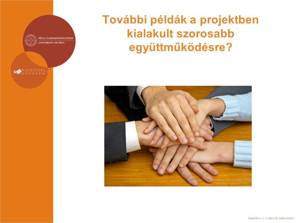 További példák a projektben kialakult szorosabb együttműködésre?