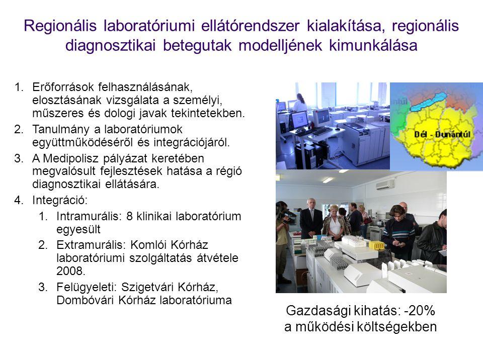 Regionális laboratóriumi ellátórendszer kialakítása, regionális diagnosztikai betegutak modelljének kimunkálása 1.Erőforrások felhasználásának, elosztásának vizsgálata a személyi, műszeres és dologi javak tekintetekben.