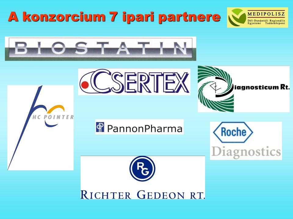 A konzorcium 7 ipari partnere