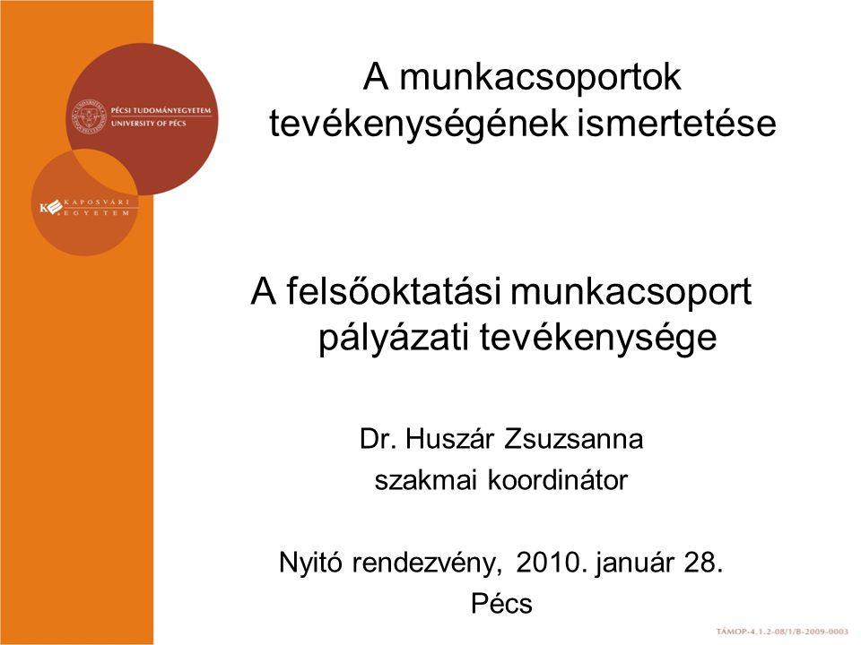 A munkacsoportok tevékenységének ismertetése A felsőoktatási munkacsoport pályázati tevékenysége Dr.