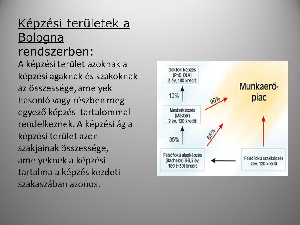 Az előkészületek: Magyarországon 5 egyetem és 3 főiskola dolgozta ki a természettudományi (matematika, fizika, kémia, biológia, földrajz, földtudomány és környezettan) alapszakokon a BSc szintű képzés követelményrét.