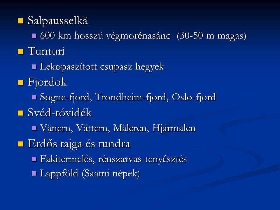 Salpausselkä Salpausselkä 600 km hosszú végmorénasánc (30-50 m magas) 600 km hosszú végmorénasánc (30-50 m magas) Tunturi Tunturi Lekopaszított csupas