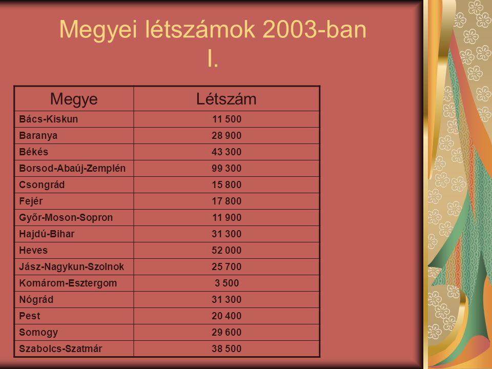Megyei létszámok 2003-ban I. MegyeLétszám Bács-Kiskun11 500 Baranya28 900 Békés43 300 Borsod-Abaúj-Zemplén99 300 Csongrád15 800 Fejér17 800 Győr-Moson