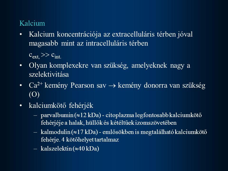 Kalcium Kalcium koncentrációja az extracelluláris térben jóval magasabb mint az intracelluláris térben c ext,  c int. Olyan komplexekre van szükség,