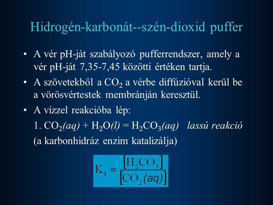Hidrogén-karbonát--szén-dioxid puffer A vér pH-ját szabályozó pufferrendszer, amely a vér pH-ját 7,35-7,45 közötti értéken tartja.