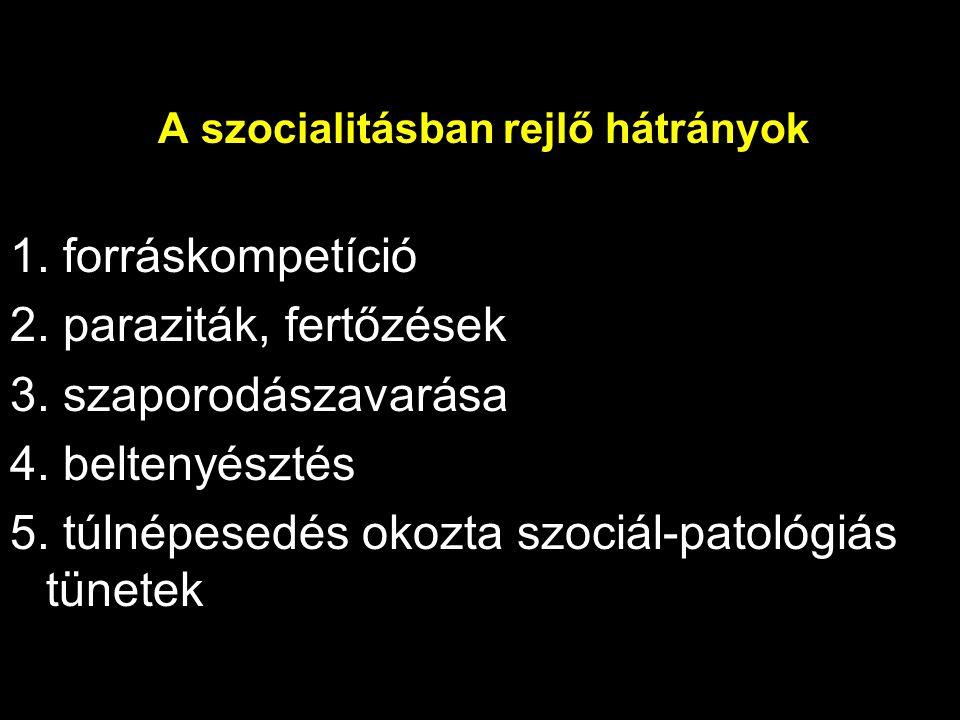 A szocialitásban rejlő hátrányok 1. forráskompetíció 2. paraziták, fertőzések 3. szaporodászavarása 4. beltenyésztés 5. túlnépesedés okozta szociál-pa