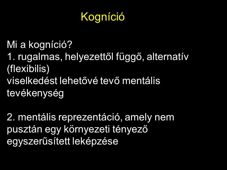 Kogníció Mi a kogníció? 1. rugalmas, helyezettől függő, alternatív (flexibilis) viselkedést lehetővé tevő mentális tevékenység 2. mentális reprezentác