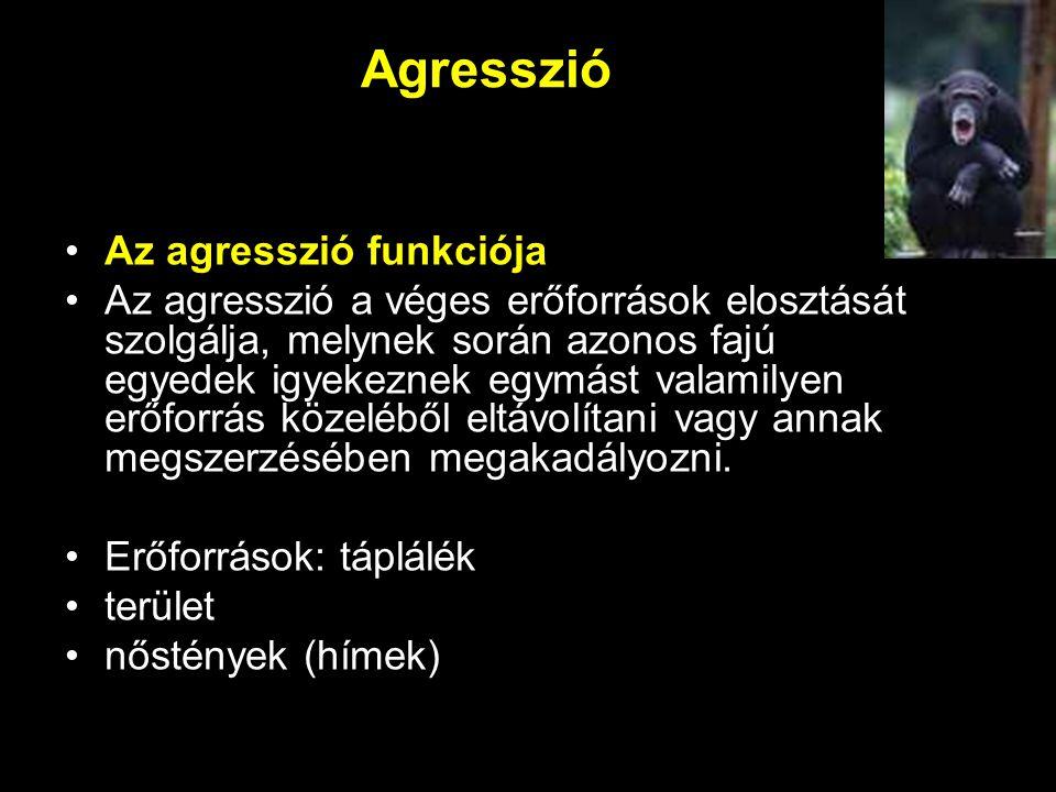 Agresszió Az agresszió funkciója Az agresszió a véges erőforrások elosztását szolgálja, melynek során azonos fajú egyedek igyekeznek egymást valamilye