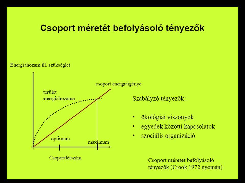 """Együttműködés: Kooperáció Javak közös megszerzése, elosztása """"önzetlenség Genetikai rokonság Kölcsönösség"""