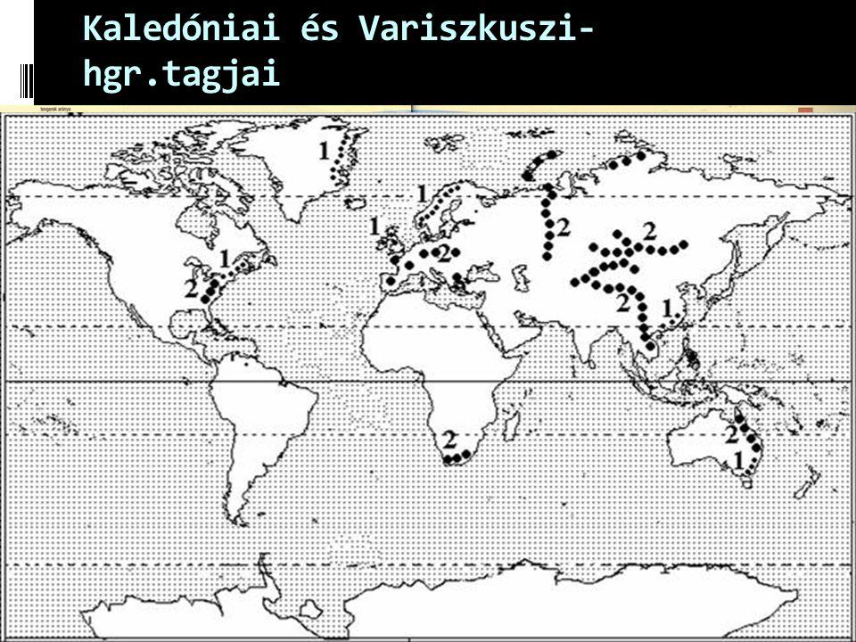 Kaledóniai és Variszkuszi- hgr.tagjai