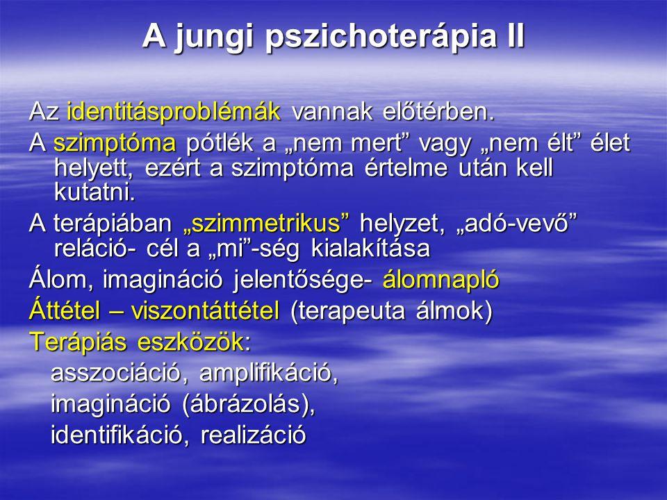 """A jungi pszichoterápia II Az identitásproblémák vannak előtérben. A szimptóma pótlék a """"nem mert"""" vagy """"nem élt"""" élet helyett, ezért a szimptóma értel"""
