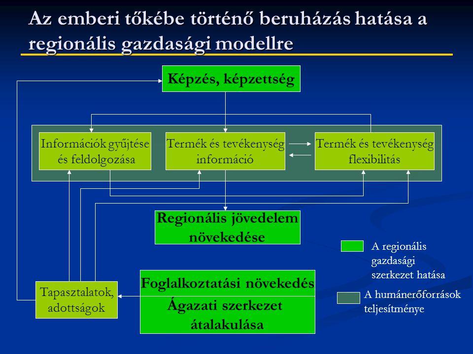 Az emberi tőkébe történő beruházás hatása a regionális gazdasági modellre Képzés, képzettség Információk gyűjtése és feldolgozása Termék és tevékenység információ Termék és tevékenység flexibilitás Regionális jövedelem növekedése Foglalkoztatási növekedés Ágazati szerkezet átalakulása Tapasztalatok, adottságok A regionális gazdasági szerkezet hatása A humánerőforrások teljesítménye