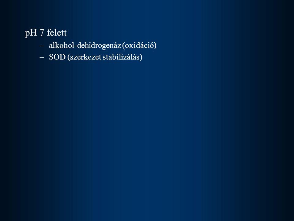 pH 7 felett –alkohol-dehidrogenáz (oxidáció) –SOD (szerkezet stabilizálás)