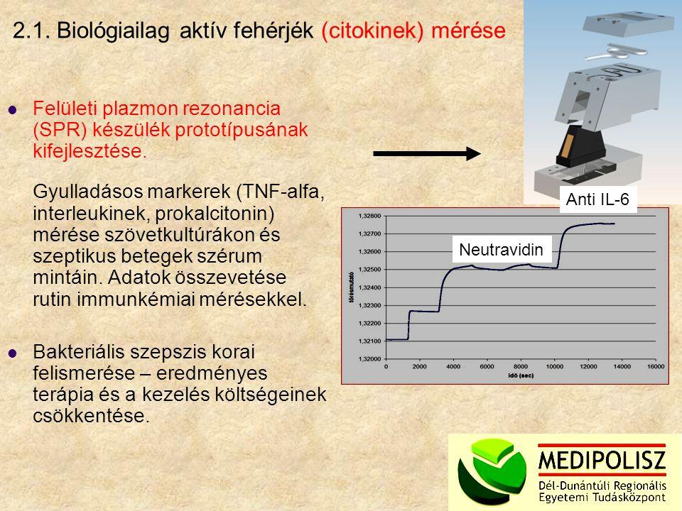 2.1. Biológiailag aktív fehérjék (citokinek) mérése Felületi plazmon rezonancia (SPR) készülék prototípusának kifejlesztése. Gyulladásos markerek (TNF