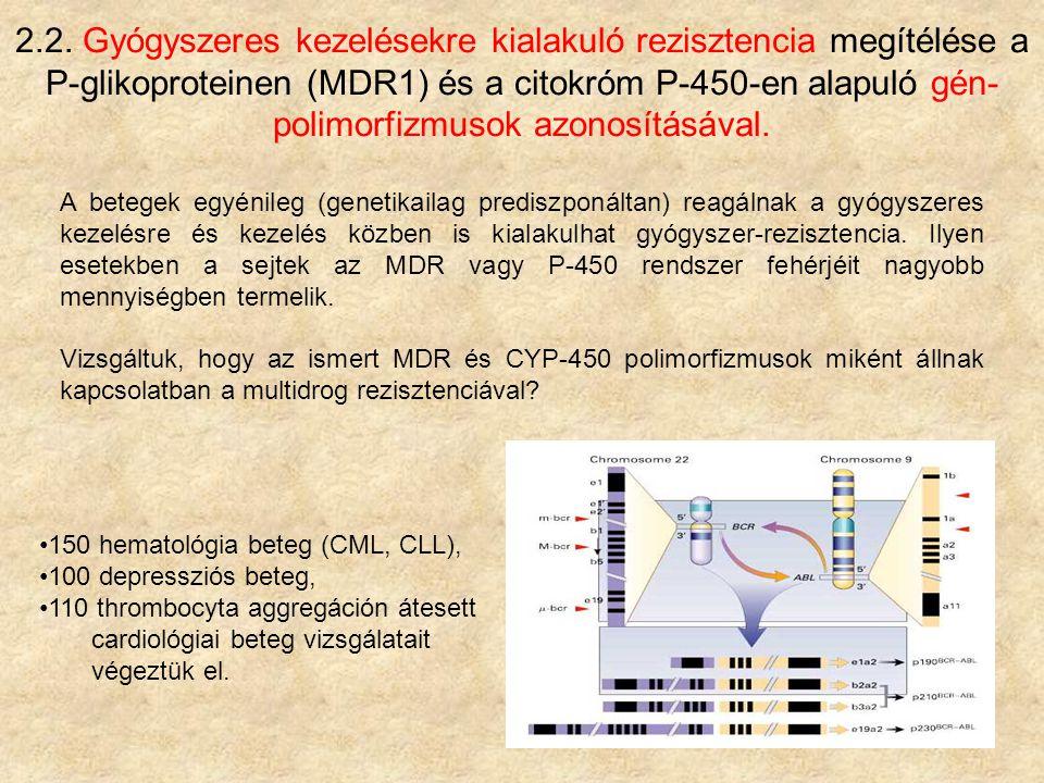 2.2. Gyógyszeres kezelésekre kialakuló rezisztencia megítélése a P-glikoproteinen (MDR1) és a citokróm P-450-en alapuló gén- polimorfizmusok azonosítá