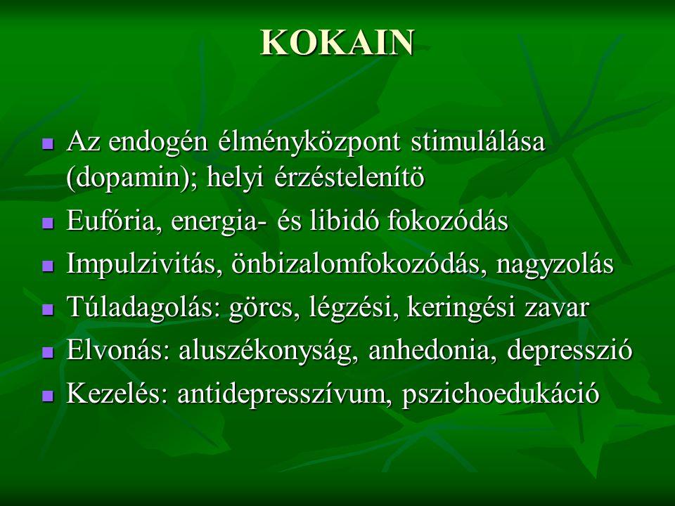 KOKAIN Az endogén élményközpont stimulálása (dopamin); helyi érzéstelenítö Az endogén élményközpont stimulálása (dopamin); helyi érzéstelenítö Eufória