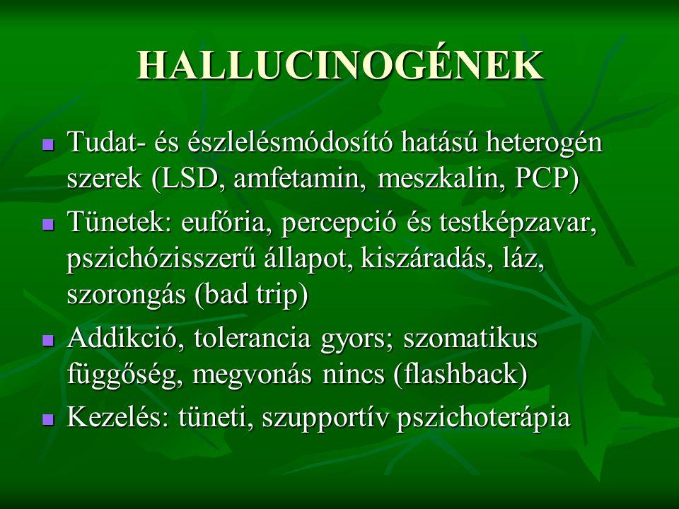 HALLUCINOGÉNEK Tudat- és észlelésmódosító hatású heterogén szerek (LSD, amfetamin, meszkalin, PCP) Tudat- és észlelésmódosító hatású heterogén szerek