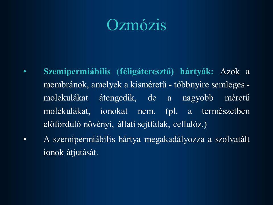 Ozmózis Szemipermiábilis (féligáteresztő) hártyák: Azok a membránok, amelyek a kisméretű - többnyire semleges - molekulákat átengedik, de a nagyobb mé
