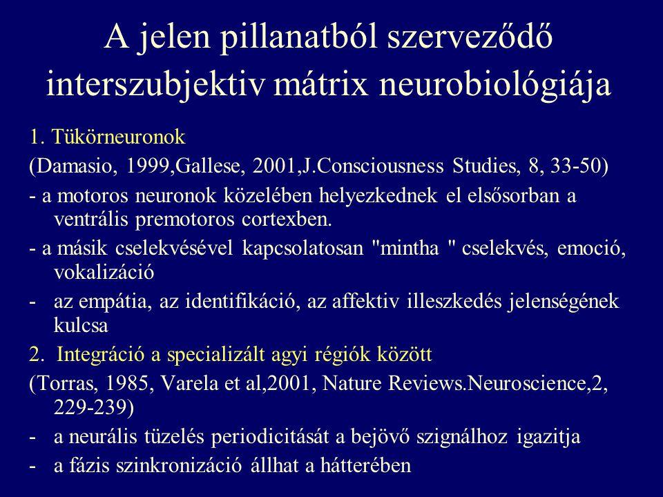 A jelen pillanatból szerveződő interszubjektiv mátrix neurobiológiája 1. Tükörneuronok (Damasio, 1999,Gallese, 2001,J.Consciousness Studies, 8, 33-50)