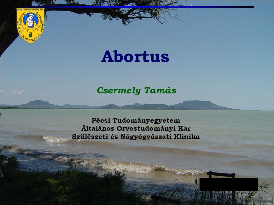 Az uterus norm. és kóros helyzete