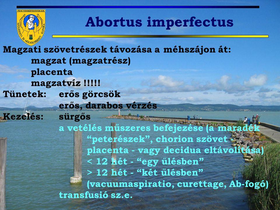 Abortus imperfectus Magzati szövetrészek távozása a méhszájon át: magzat (magzatrész) placenta magzatvíz !!!!! Tünetek: erős görcsök erős, darabos vér