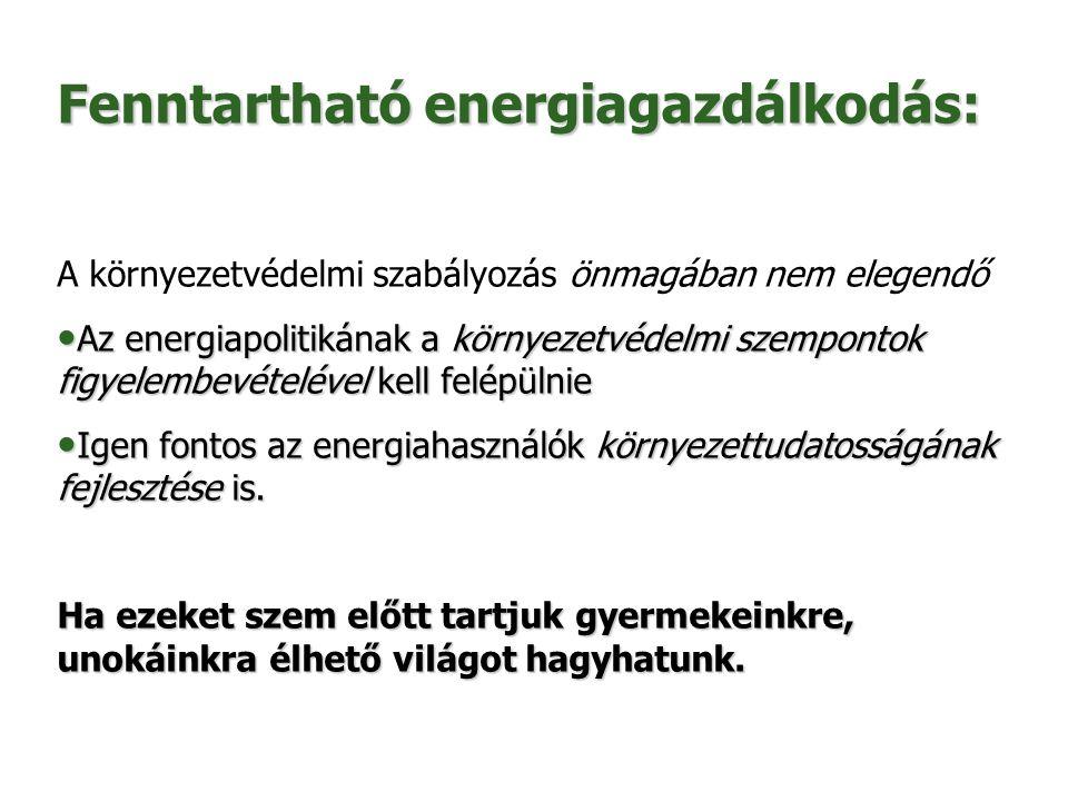 Fenntartható energiagazdálkodás: A környezetvédelmi szabályozás önmagában nem elegendő Az energiapolitikának a környezetvédelmi szempontok figyelembev