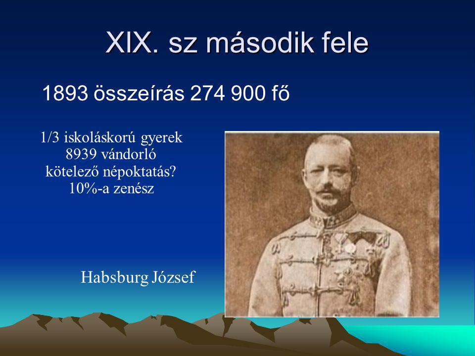 XIX. sz második fele 1893 összeírás 274 900 fő 1/3 iskoláskorú gyerek 8939 vándorló kötelező népoktatás? 10%-a zenész Habsburg József
