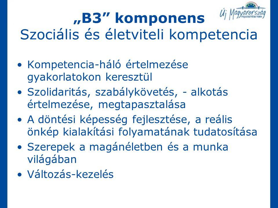 """""""B3"""" komponens Szociális és életviteli kompetencia Kompetencia-háló értelmezése gyakorlatokon keresztül Szolidaritás, szabálykövetés, - alkotás értelm"""