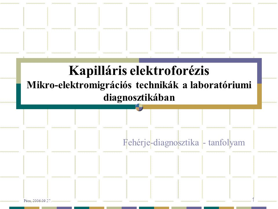 Pécs, 2006.09.27. 12/58 oldat  papír  gél  oldat 1930 1950 1955 1967 Az elektroforézis közege