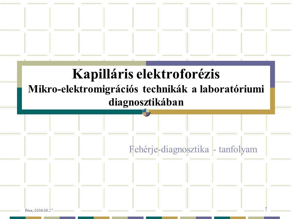 Pécs, 2006.09.27. 92/58 Sejt-analízis chip-en