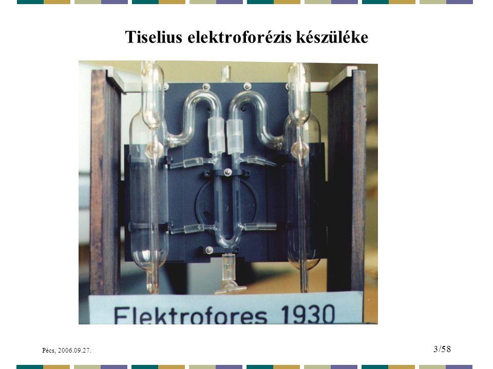 Pécs, 2006.09.27. 84/58 A kapilláris elektroforézis nagy kalandja