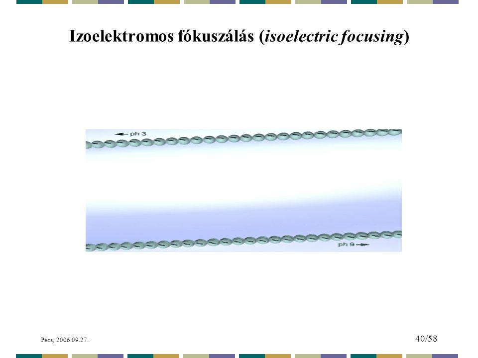 Pécs, 2006.09.27. 40/58 Izoelektromos fókuszálás (isoelectric focusing)
