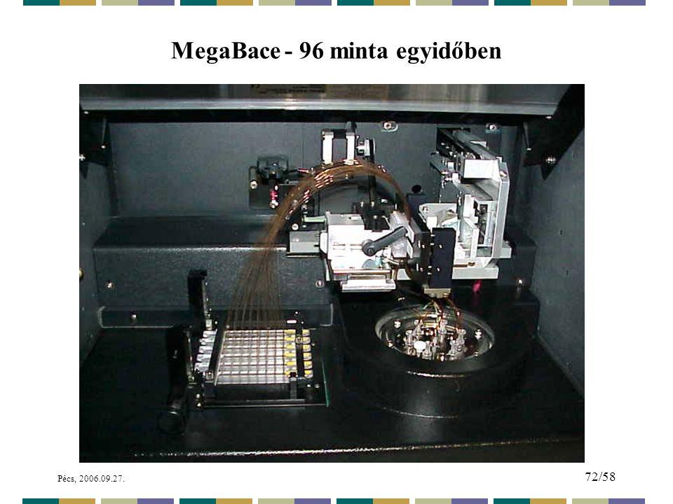 Pécs, 2006.09.27. 72/58 MegaBace - 96 minta egyidőben