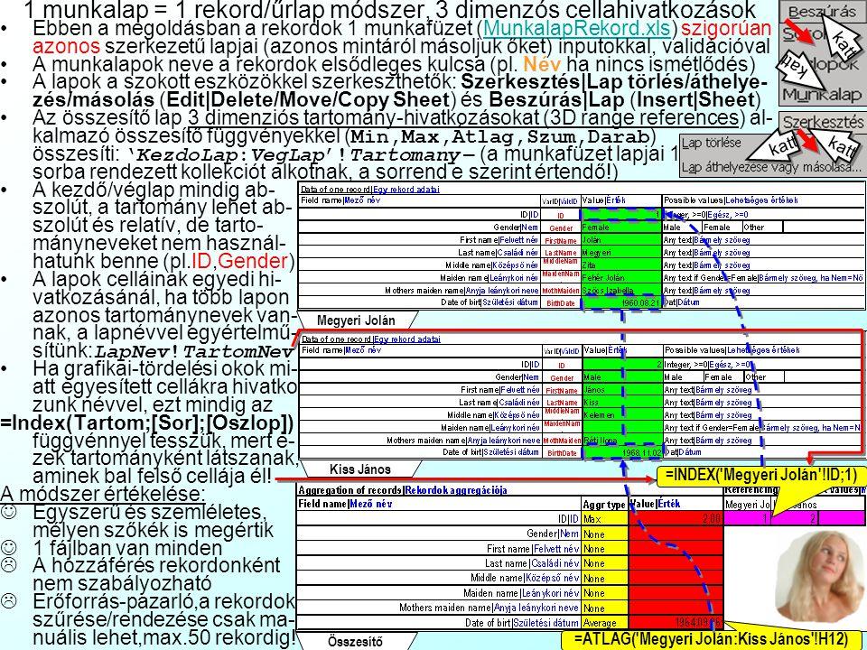 1 munkalap = 1 rekord/űrlap módszer, 3 dimenzós cellahivatkozások Ebben a megoldásban a rekordok 1 munkafüzet (MunkalapRekord.xls) szigorúan azonos szerkezetű lapjai (azonos mintáról másoljuk őket) inputokkal, validációvalMunkalapRekord.xls A munkalapok neve a rekordok elsődleges kulcsa (pl.
