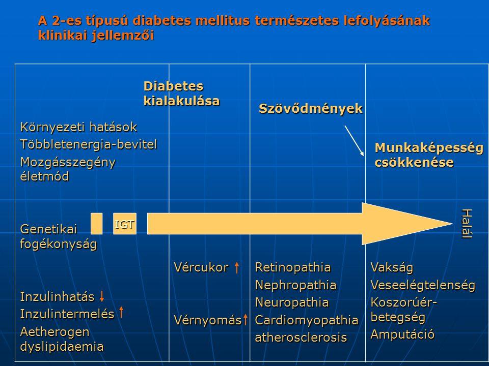 A 2-es típusú diabetes mellitus természetes lefolyásának klinikai jellemzői Környezeti hatások Többletenergia-bevitel Mozgásszegény életmód Genetikai fogékonyság InzulinhatásInzulintermelés Aetherogen dyslipidaemia VércukorVérnyomásRetinopathiaNephropathiaNeuropathiaCardiomyopathiaatherosclerosisVakságVeseelégtelenség Koszorúér- betegség Amputáció Diabetes kialakulása Szövődmények Munkaképesség csökkenése Halál IGT