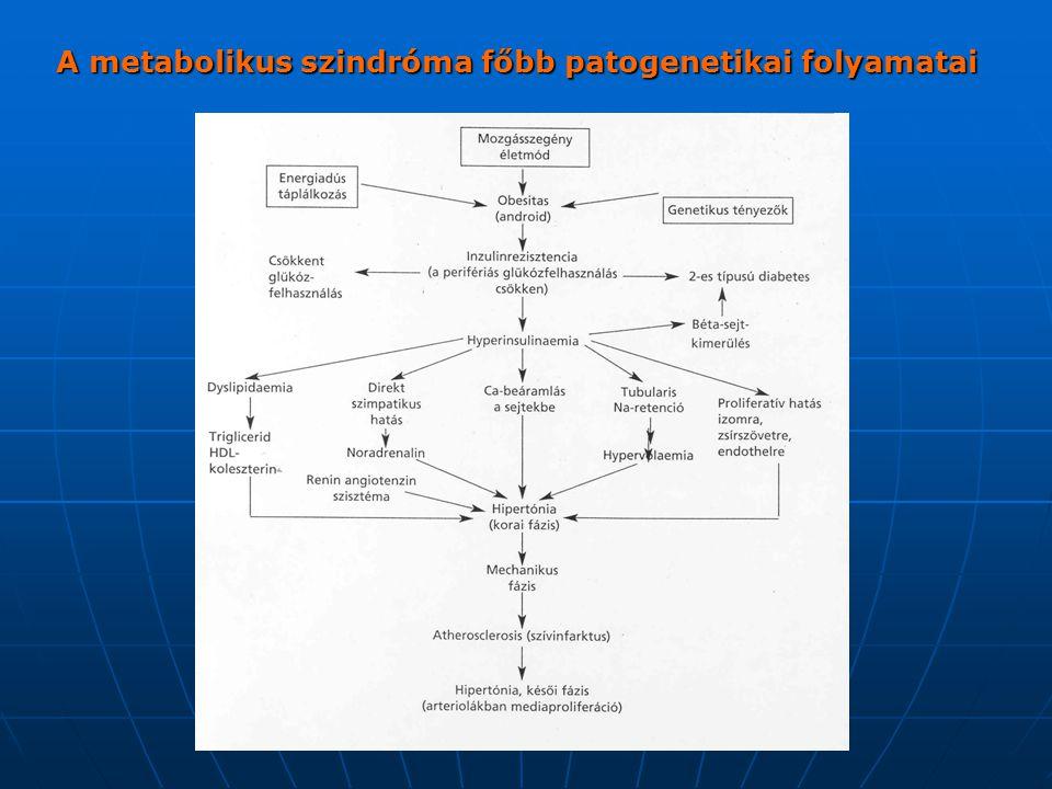 A metabolikus szindróma a major rizikófaktorok olyan társulása, amely nem véletlenül, hanem valamely közös okra visszavezethetően jött létre.
