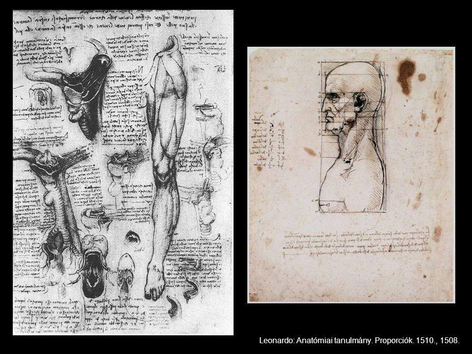 Leonardo: Anatómiai tanulmány. Proporciók. 1510., 1508.