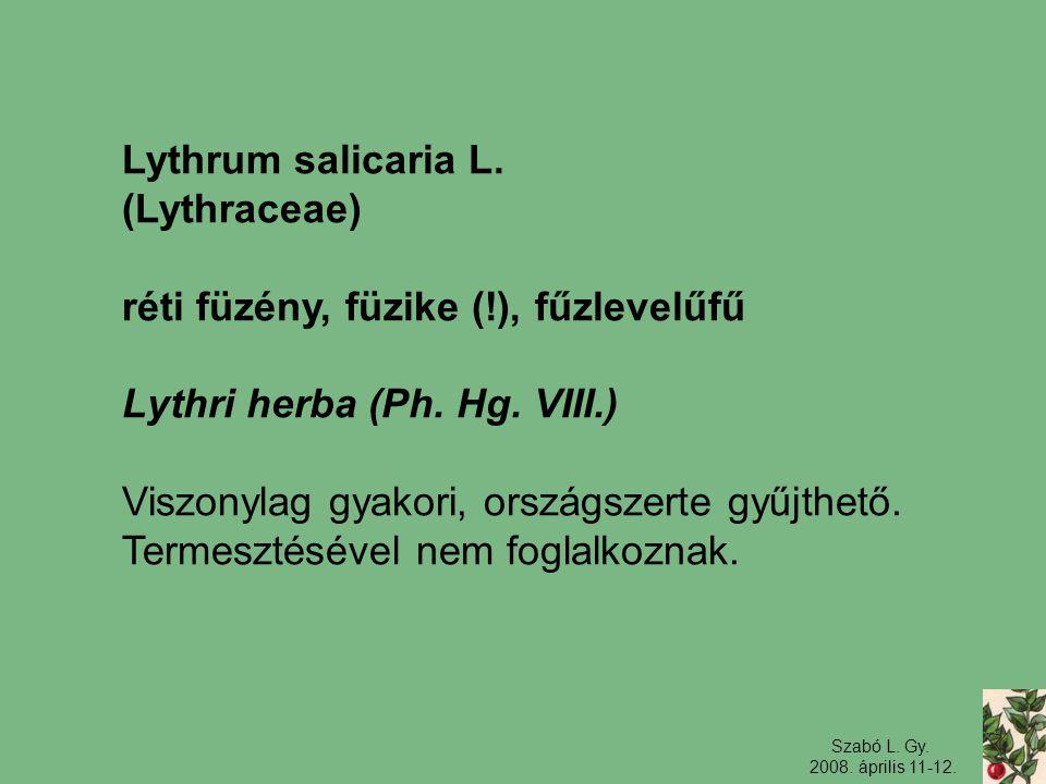 Szabó L. Gy. 2008. április 11-12. Lythrum salicaria L. (Lythraceae) réti füzény, füzike (!), fűzlevelűfű Lythri herba (Ph. Hg. VIII.) Viszonylag gyako