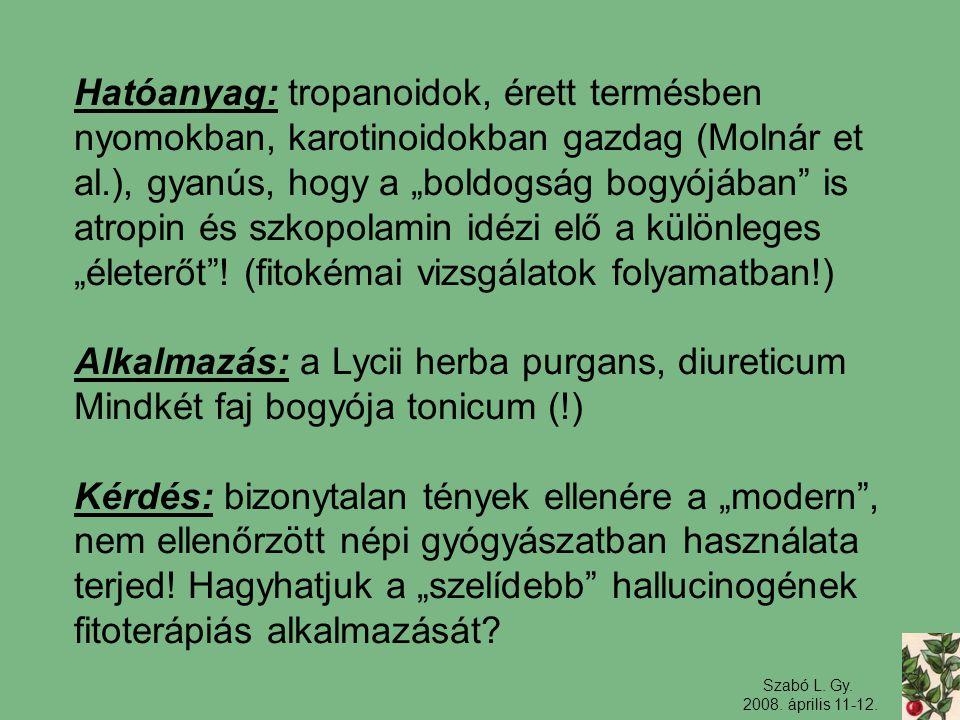 """Szabó L. Gy. 2008. április 11-12. Hatóanyag: tropanoidok, érett termésben nyomokban, karotinoidokban gazdag (Molnár et al.), gyanús, hogy a """"boldogság"""
