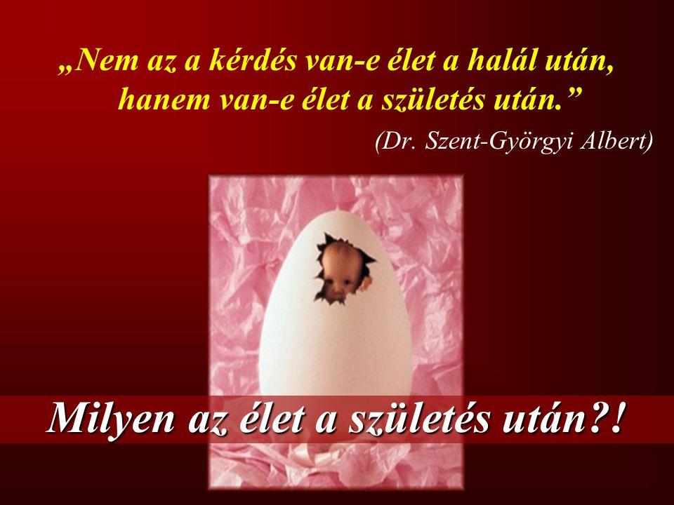 """""""Nem az a kérdés van-e élet a halál után, hanem van-e élet a születés után."""" (Dr. Szent-Györgyi Albert) Milyen az élet a születés után?!"""