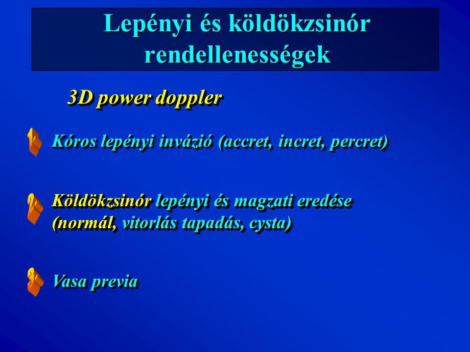 Lepényi és köldökzsinór rendellenességek Kóros lepényi invázió (accret, incret, percret) Köldökzsinór lepényi és magzati eredése (normál, vitorlás tap