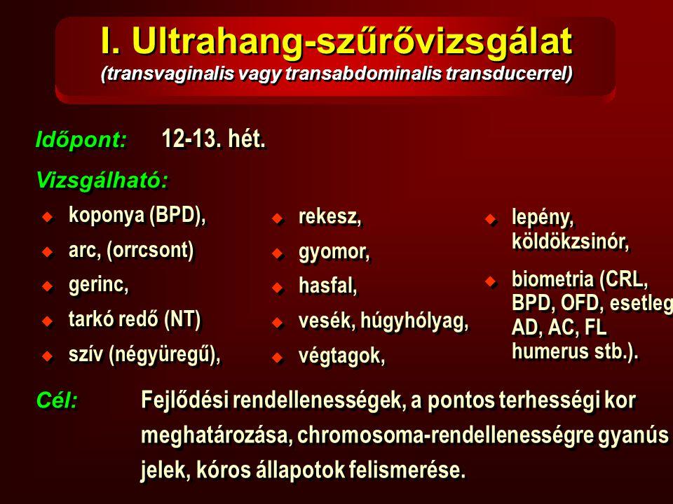 I. Ultrahang-szűrővizsgálat (transvaginalis vagy transabdominalis transducerrel) Időpont: 12-13. hét. Vizsgálható: Időpont: 12-13. hét. Vizsgálható: 